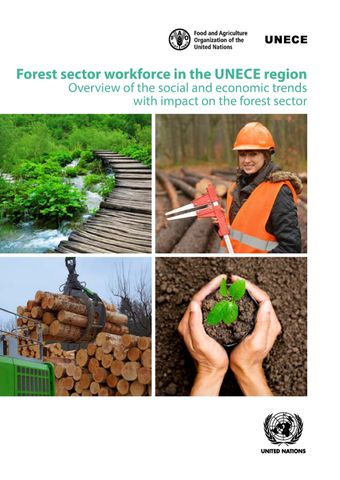 image of Forest Sector Workforce in the UNECE Region