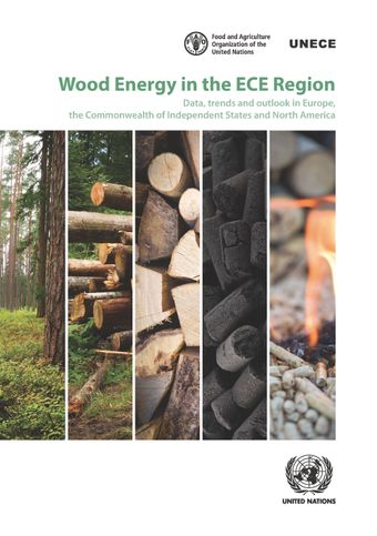 image of Wood Energy in the ECE Region